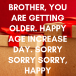 Happy Birthday Wishes For Elder Brother Tumblr