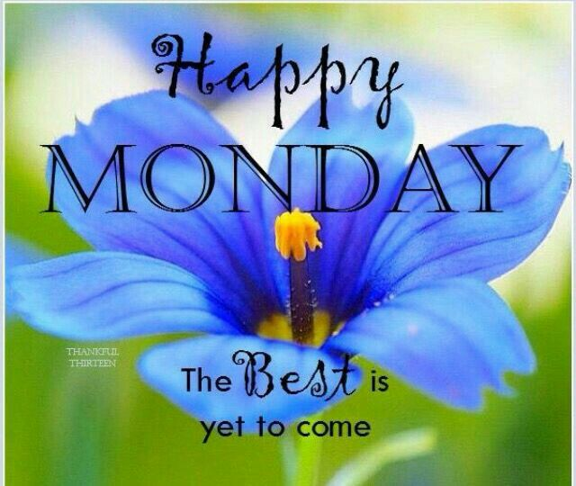 happy monday morning greetings quotes uploadmegaquotes