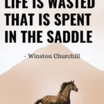 Horse Quotes And Sayings Twitter