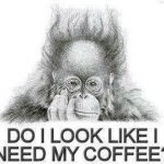 I Need My Coffee Images and Quotes