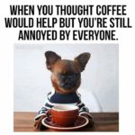 I Need My Coffee Quotes Images