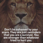 Injured Lion Quotes Facebook