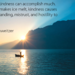 Kindness Quotes by Albert Schweitzer