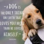 Life Without Dogs Quotes Tumblr