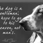 Mark Twain Dog Quotes