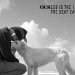 Mark Twain Quotes about Kindness