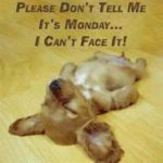 Oh No Tomorrow Is Monday Quotes