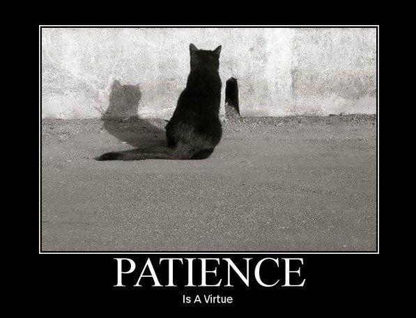 Patience Is A Virtue Quote – UploadMegaQuotes