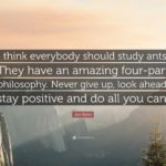 Positive Philosophy Quotes