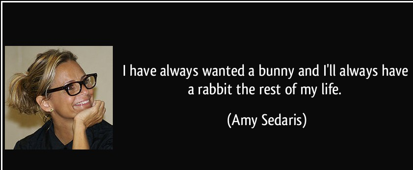 Quotes About Easter by Amy Sedaris