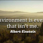 Quotes About Environmental by Albert Einstein