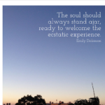 Quotes About Experience by Emily Dickinson