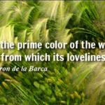 Quotes About Nature by Pedro Calderon de la Barca