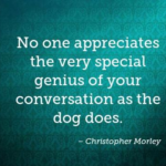 Quotes About Pet