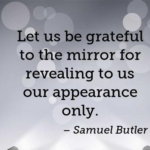Quotes About Thankful by Samuel Butler