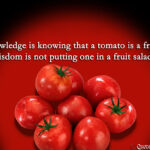Quotes About Tomatoes And Wisdom Facebook