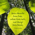 Quotes On Greenery And Beauty Facebook