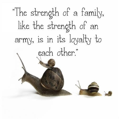 quotes about family strength upload mega quotes