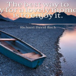 Richard Bach Quotes About Happiness