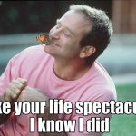 Robin Williams Hook Quotes Twitter