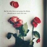 Short Rose Quotes Facebook