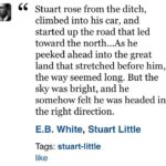 Stuart Little Quotes Twitter