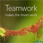 Teamwork Quotes For The Workplace