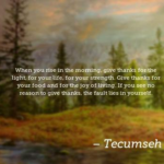 Tecumseh Quotes About Strength