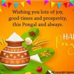 Thai Pongal Wishes Tumblr