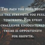 The Pain You Feel Today Is The Strength Quote Pinterest