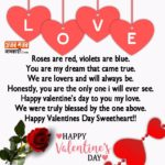 Valentine Day Sms In English For Girlfriend Tumblr