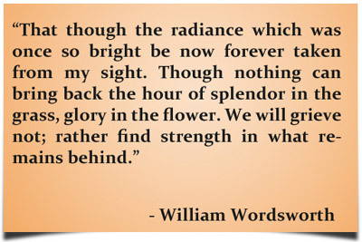 William Wordsworth Quotes About Sympathy