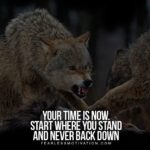 Wolf Motivational Quotes Twitter